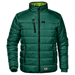 Blouson Patriot Verde